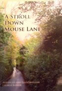 Mouse Lane Book